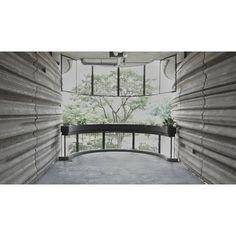 #threshold #interfacing #materiality #volumes #void #planter #railing #insideoutside #landscape #sg #sonyalpha #sonya7ii #sonyimages