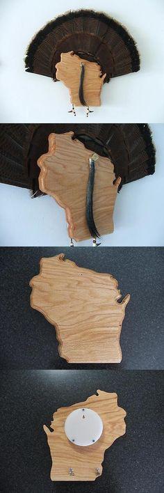 Birds 71123: Wild Turkey Tail Fan Display Mount - State Of Wisconsin - Red Oak -> BUY IT NOW ONLY: $59.95 on eBay!