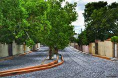 Av. Roman Cepeda, located on Zona Centro, Arteaga, Coahuila, México