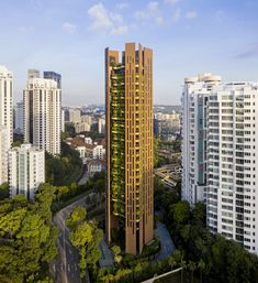 Image 17 of 17 from gallery of EDEN Singapore Apartments / Heatherwick Studio. Photograph by Hufton+Crow Local Architects, Green Landscape, Landscape Design, Singapore Map, Thomas Heatherwick, High Rise Apartments, Luxury Apartments, Concrete Wall, String Garden