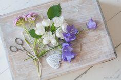 https://flic.kr/p/JkzCJR | Bleu, blanc, rose... | Campanules, seringat, œillets des poètes.