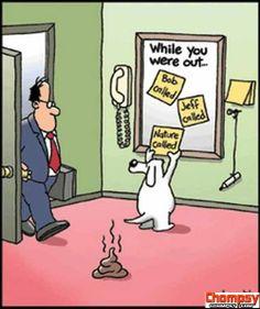 Whyatt  cartoons
