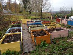 pallekarmer i hagen