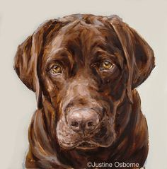 Google Image Result for http://www.paintmydog.co.uk/dog_portraits/dog_portraits_400/choc_lab_pup.gif