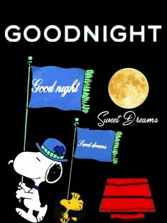 Snoopy Images, Snoopy Pictures, Emoji Pictures, Good Night Blessings, Good Night Wishes, Good Night Sweet Dreams, Funny Day Quotes, Funny Good Morning Quotes, Good Night Everyone