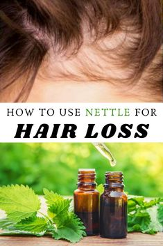 It might come as news to some that stinging nettle is one of the best herbal remedies to combat hair loss. Full of antioxidants, anti-inflammatory agents, and minerals, nettle is one of the most natural ways to get back a full head of hair. Hair Remedies, Natural Remedies, Nettle Tea Benefits, Nettle Recipes, Hair Issues, Best Skin Care Routine, Diy Hairstyles, Hair Loss, Hair Growth