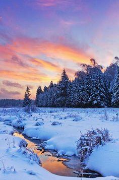 sunset-winter-snow-woods