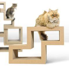 Katris: Cat Scratching Block / Modular Furniture / Cat Tree (Z-shape), http://www.amazon.com/dp/B00HUBLK56/ref=cm_sw_r_pi_awdm_Frxhub0XP0XBR
