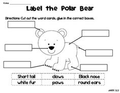 Arctic Animals Label Me Sheets - Katie Hoss - TeachersPayTeachers.com