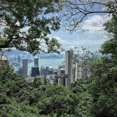 Snapshot from my last 10k run back in 2016 up to #thepeak with beautiful view over #hongkongharbour and HK's skyline  #Hongkong #hongkongpeak #fitness #run #awesome_photographers #fitnessmotivation  #fitnessmodel #awesomepix #moodygrams #agameoftones #romantic #sunset #jj_sunsetlovers #hafen #beach #natureaddict #travelpics #iphone7 #icapturemobile #mobileshot  #besttime #tram #moodygrams #tv_streetlife #tv_pointofview #jj_mobilephotography #awesomepix