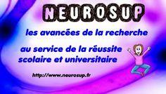 Neuroéducation et carte heuristique