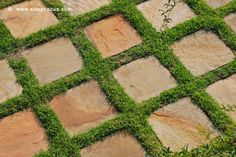 Stone paving grid with grass