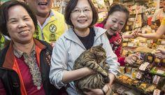 President Tsai and her beloved cat, Shiang-Shiang. (Image:   Tsai Ing-wen via  Facebook)