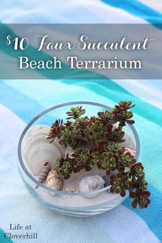Display sea shells, sand and other treasures from your beach vacation in a large glass bowl alongside faux succulents to create a beach terrarium as a centerpiece or coastal home decor.