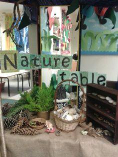 Nature display at Springmead School nursery, Somerset