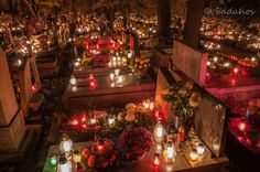All Souls Day in Krakow, Poland. Elegant candlelit cemeteries honor the dead. Polish Christmas, Christmas Tree, Bio Baby, Houses Of The Holy, All Souls Day, All Saints Day, Vintage Candles, Samhain, Day Of The Dead