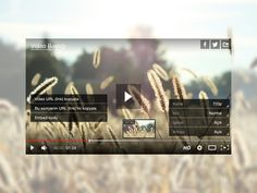 video player skin