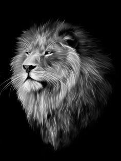 Lion Fractal by Julie L Hoddinott - Lion Fractal Digital Art ...