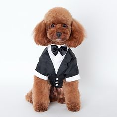 Cat / Dog Tuxedo Black Dog Clothes Winter / Spring/Fall Bowknot Cute / Wedding / Cosplay - USD $ 9.99