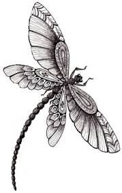 Image result for dotwork and lace dragonfly
