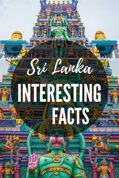 Interesting facts about Sri Lanka, country of million colours but one kind of dogs, where brands can advertise on governmental and road signs. #travel #traveltips #interestingfacts #srilanka #srilankamta #travelphotography #asia