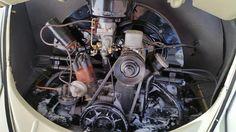 Chito Hernandez, from Laredo, Texas. President of Laredo Oildrippers VW Club. His 1958 Mango Green VW Convertible, all original, still 6 volts, 1100cc engine.