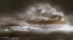 Vogel spel in de wolken.