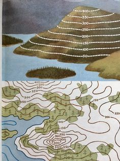 Ladybird series 671 - Understanding Maps - Re-Wilding 8th Grade Science, Middle School Science, Teaching Geography, Teaching Science, Compass Navigation, Contour Line, Map Skills, Ladybird Books, Topographic Map