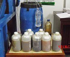 Lidah buaya/Aloe dapat diolah menjadi pupuk organik cair. ingin megetahui cara pembuatan aloe vera menjadi pupuk cair?? http://www.organikilo.co/2015/01/cara-mengolah-lidah-buaya-menjadi-pupuk.html