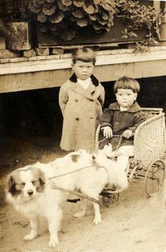 Clarence Garbutt Plant, left, and his brother John Henry Plant with a dog cart in Madison County, Florida.