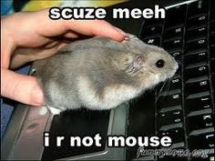 The Superior Mind Man vs. Mouse