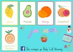 Baby Led Weaning, Grapefruit, Avocado, Lemon, Orange, Lawyer