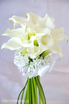 カラーとアリアムコワニーのクラッチブーケ Diy Wedding Bouquet, White Wedding Bouquets, Floral Wedding, Wedding Flowers, Calla Lily Bouquet, Hand Bouquet, Calla Lillies, How To Wrap Flowers, Hand Flowers