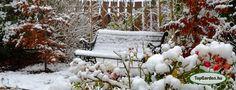 Újdonság: Kertápolás télen, http://kertinfo.hu/kertapolas-telen/, ezekben a témakörökben:  #decemberben #gardening #januárban #Kert #kertápolás #kertápolástélen #kertépítéstélen #kertfenntartás #kertitóápolása #Kéziszerszámok #Konyhakertieszközök #Mag #télikertimunka, írta: SD Kert