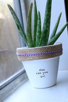 Houseplants That Filter the Air We Breathe Aloe Ha Aloha Haha Plant Puns Are Our Favorite We'd Love To Help You Find What Makes You, You And Plant Some Seeds For Marketing Growth Potted Plants, Garden Plants, Indoor Plants, Plant Pots, Dream Garden, Garden Art, Herb Garden, Container Gardening, Gardening Tips