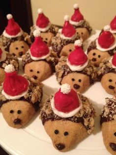 Santa Hedgehogs santa hedgehog shortbread cookies with candy melt-dipped kiss hats Biscuit Cookies, Shortbread Cookies, Hedgehog Cookies, Gabi, Candy Melts, Cupcake Ideas, Hedgehogs, Cleaning Tips, Christmas Cookies