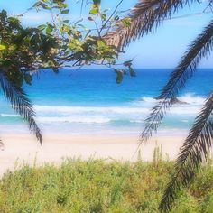 【ai_snygl】さんのInstagramをピンしています。 《今年ラスト海⛱快晴( ´ ▽ ` )海澄んでて綺麗😍  #海 #伊豆 #下田 #ビーチ #デート #リゾート #綺麗 #エメラルド #椰子の木 #入田浜 #sea #izu #beach #date #beautiful #emerald #resort #wave #love #sunny #sunnyday #goodday #sunshine》