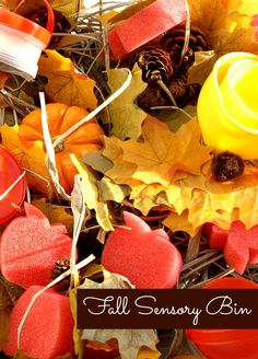 Fall Sensory Bin & Learning Activities.  For children who still mouth items, use only large objects (large pine cones, mini-pumpkins are ok, etc.)