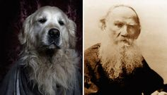5 Dogs Dressed As Famous Writers via @PureWow