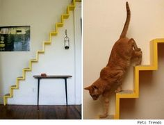 23 Crazy Cat Furniture | OMG! Funny Pictures