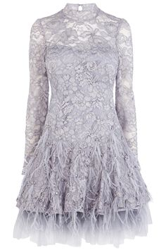 Reanna Feather Dress, £350,CoastWith lace and feathers being two big AW14 trends, this Coast dress is totally on point.