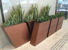 Contemporary pot made of fibre glass for commercial entrance