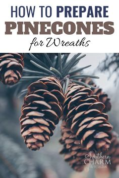 Pinecones are a popular natural accent for wreaths. Sometimes, they are THE wreath! Julie, of Southern Charm Wreaths, gives you great tips and techniques on how to correctly prepare pinecones for your DIY floral projects. We don't want any bugs or sap hanging around!