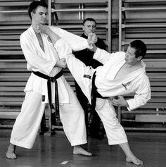 H Karate Kata, Shotokan Karate, Martial Arts Manga, Karate Styles, Self Defense Techniques, Art Rules, Dynamic Poses, Aikido, Taekwondo