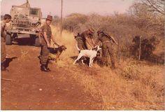Doggies se spoorsnyers