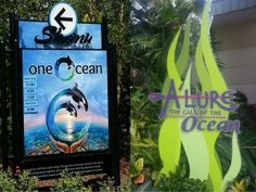 """Check out this review: """"We Had a Whale of a Time at SeaWorld Orlando"""""""