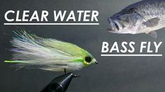 Tying The BEST Fly for BIG Bass in Clear Water - (Step-by-Step + Underwa...