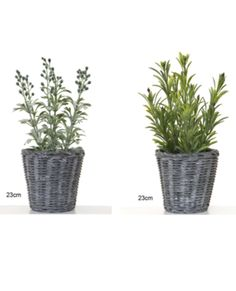 Allissias Attic Design & Vintage French Style — Pair of Country Baskets with Sage & Rosemary