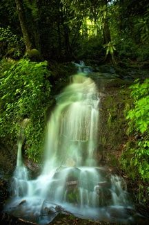 Original Photography on Aluminium Great Smoky Mountains National Park from Thomas Lhoest #Art #Photography #Waterfall #Aluminium #Nature #Green #Binnovart #Forsale