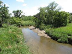Plum Creek near Walnut Grove, MN. (Site of On the Banks of Plum Creek by Laura Ingalls Wilder.)